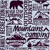 Vector Camping Seamless Pattern Or Background poster