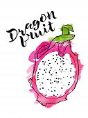 Vector Line Illustration Of Dragon Fruite Half With Watercolor Abstract Texture On White Background  poster