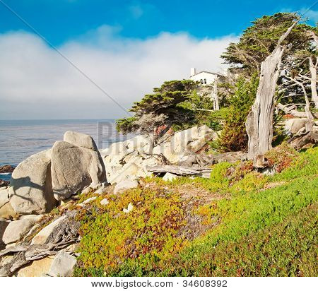 Beautiful Landscape With Ocean, Rocks And Green Shrubs.