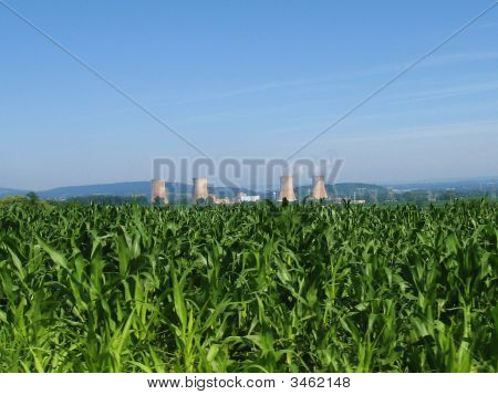 Corn And Nuclear Power