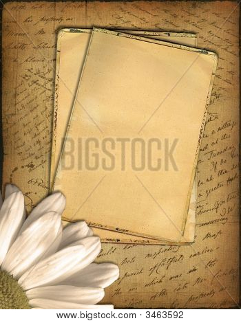 Old Paper With The Hand-Written Text And A Camomile