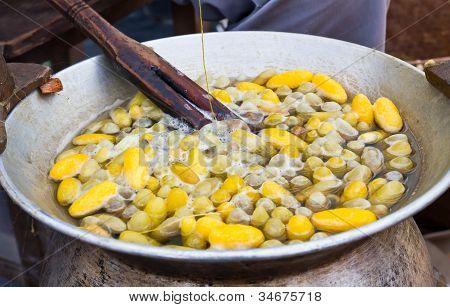 Cocoon hirviendo en una olla