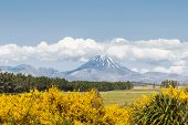 Tongariro National Park Panorama With Tongariro And Ngauruhoe Volcanoes Covered By Cumulus Clouds poster