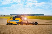 Red Grain Harvesting Combine In A Sunny Day. Yellow Field With Grain. Agricultural Technic Works In  poster