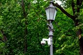 Iron Street Lamp With Video Surveillance Camera In The Park On A Background Of Green Trees. poster