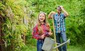 Family Dad And Daughter Planting Plants. Transplanting Vegetables From Nursery Gardening Center. Pla poster