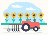 Agriculture And Farming, Machinery Working On Field With Sunflowers. Farmland Harvesting Season. Mec poster