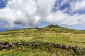A Rural Pasture On Pico Island In The Azores, Portugal. poster