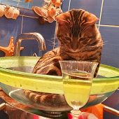 Young Bengal Cat Sitting In The Glass Slink And Drinking Sparkling Wine From The Wineglass. Funny Ba poster
