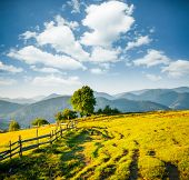 Beautiful sunny day in picturesque mountain landscape. Location place of Carpathian mountains, Ukrai poster