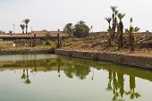 The Sacred Lake In The Temple Of Amun At Karnak Temple. Luxor, Egypt poster