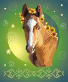 Funny Foal, Vector Colorful Realistic Illustration. Portrait Of Bay Little Horse With Sunflowers In  poster