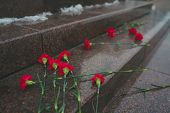 Fresh Carnations On The Historical Monument. Flowers In Honor Of Memory And Sorrow. poster