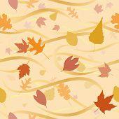 Autumn Wind Background