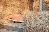Piled Stacks Of Dry Straw Collected For Animal Feed. Dry Baled Hay Bales Stack. poster