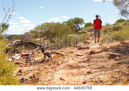 Man Hiking Australian Outback