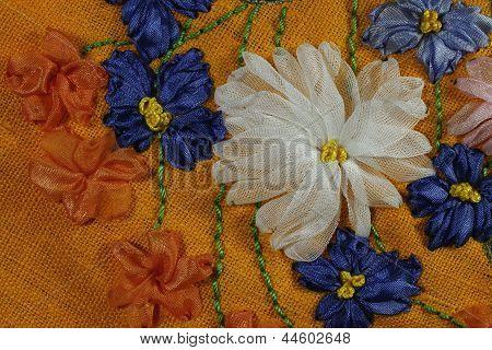 Chicory And Chrysanthemum