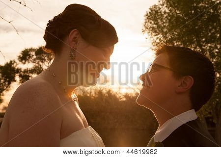 Gay Bride And Groom Outdoors