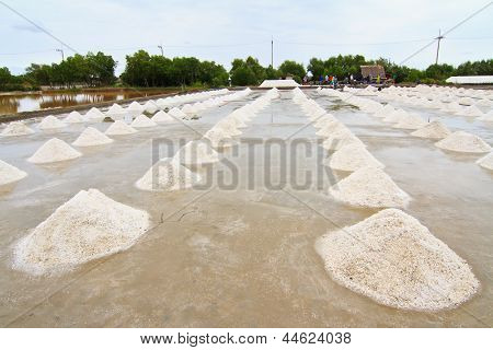 Saline, Salt field in Thailand