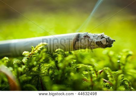 Cigarette In Grass