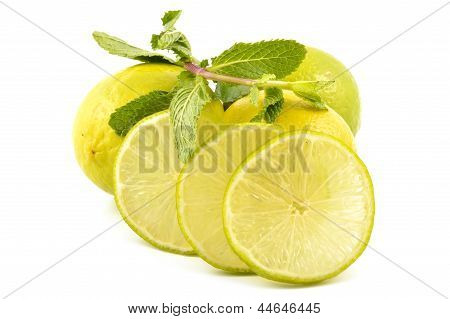 Lime Slices And Mint Leaves