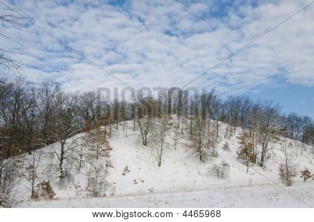 Winter Scene In Indiana