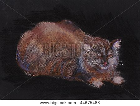 Cat By Name  Ser-han