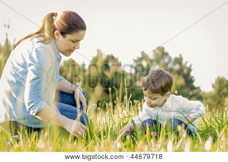 Pregnant Mother And Son Picking Flowers In A Field