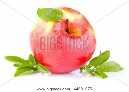 One Red Juicy Apple With Green Leaves And Drops Of Water On A White Background