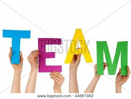 Hands Holding Team