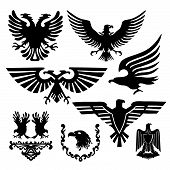 picture of hawk  - a collection of stylized vector sign silhouette picture of an eagle - JPG