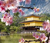 stock photo of garden sculpture  - gold temple japan for adv or others purpose use - JPG