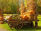 stock photo of hay bale  - pumpkins and watermelons pretty rural autumn scene - JPG
