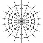 foto of venomous animals  - Vector illustration of cobweb isolate on white - JPG