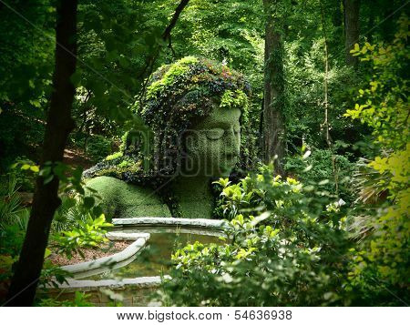 Earth Goddess in a Botanical Setting