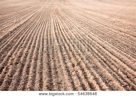 Furrows In A Field After Plowing It.
