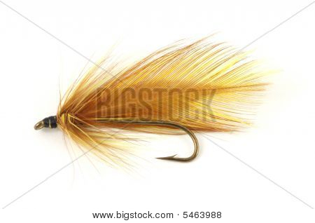 Brown Fly Fishing Fly