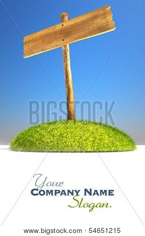 3D rendering of a wooden sign post on a grass promontory ideal for inserting your own message