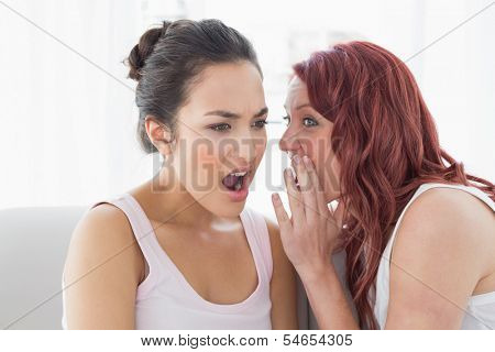 Close-up of young female friends gossiping in the living room at home