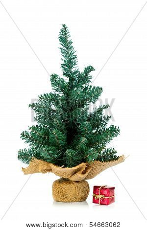 Undecorated Small Tree With Small Gift