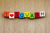 I Love Squash - Sign Series For Loving Sport And Sports Fans