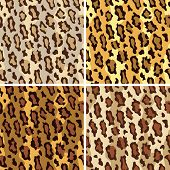 pic of ocelot  - Seamless pattern of leopard spots in  - JPG