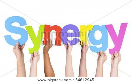 Multiethnic Hands Holding Text Synergy