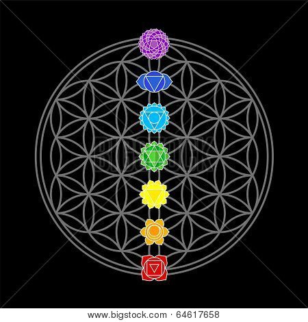 Flower of Life Chakras Black