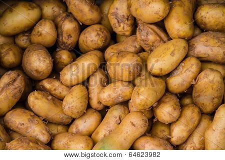 Raw Potatos In Market