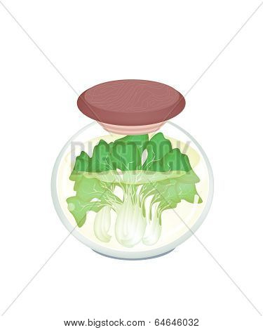 A Jar Of Delicious Pickled Bok Choy