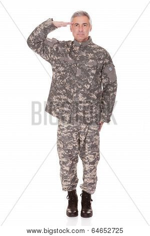 Mature Military Soldier Saluting