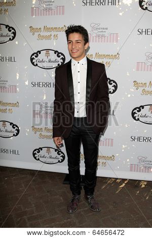 LOS ANGELES - APR 27:  Aramis Knight at the Ryan Newman's Glitz and Glam Sweet 16 birthday party at Emerson Theater on April 27, 2014 in Los Angeles, CA