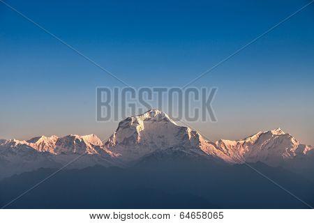 Dhaulagiri Mountain On Sunrise