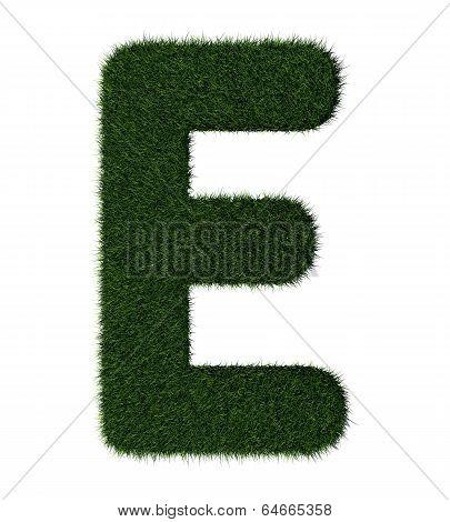 Grass alphabet-E